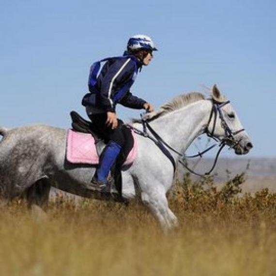 Balades à cheval et centres équestres